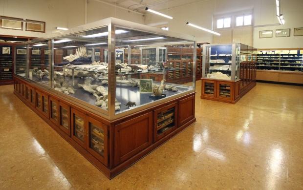 museu_seminari4
